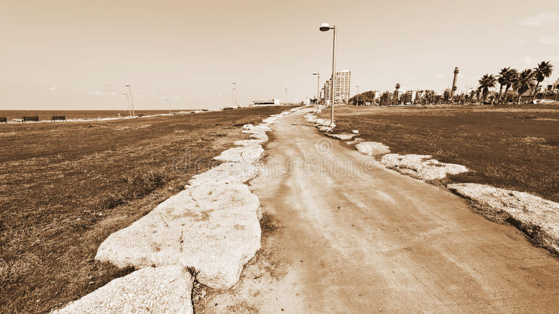 Promenad i Tel Aviv royaltyfri bild