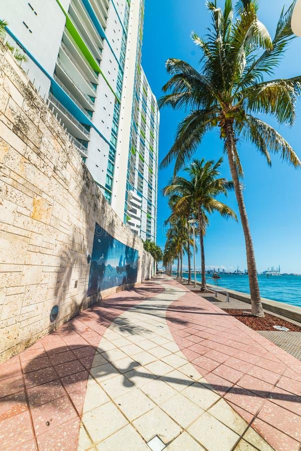 Promenad vid havet i Miami Riverwalk arkivfoton