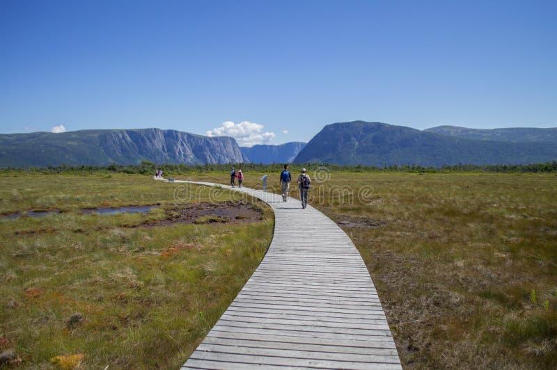Promenade à l'étang occidental de ruisseau à Gros Morne National Park dans Terre-Neuve photo stock