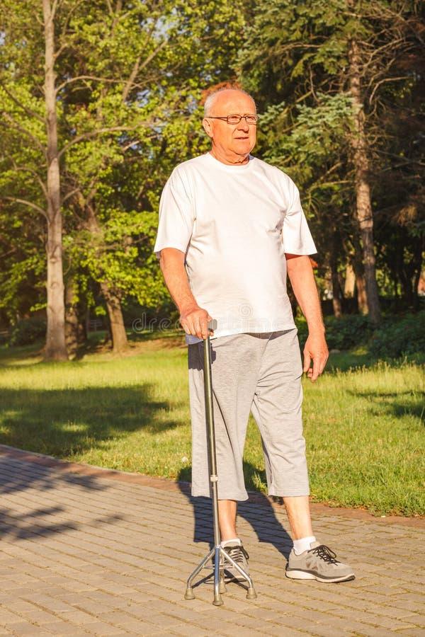 Promenade appréciante masculine supérieure en parc avec le bâton photos libres de droits