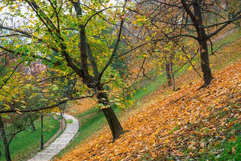 Promenade au château de Buda Hill, Budapest, Hongrie Automne images stock