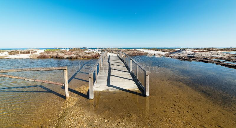 Promenade au-dessus d'un étang image libre de droits