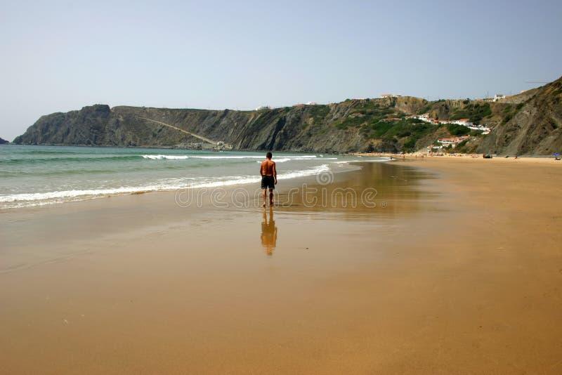 Download Promenade au soleil image stock. Image du plage, nature - 744049