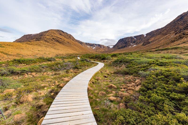 Promenade aux plateaux de Gros Morne National Park, Terre-Neuve image stock