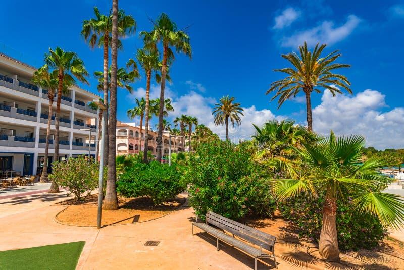 'promenade' con las palmeras en el Sant Jordi de Colonia de, Majorca del parque imagenes de archivo