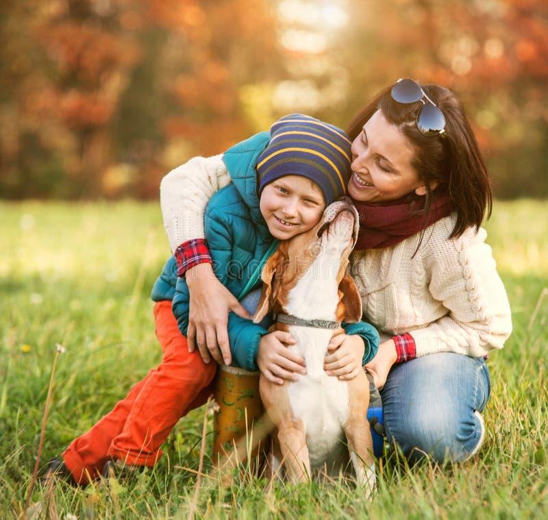 Promenade d'automne avec l'animal familier préféré image stock