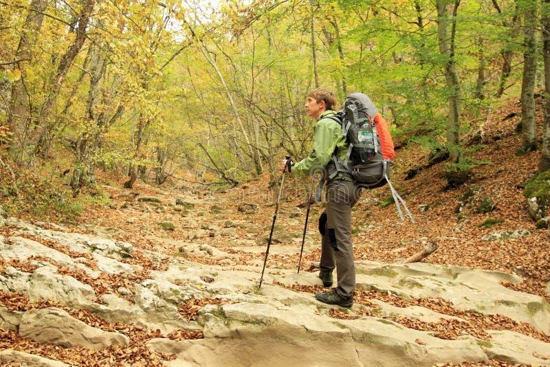 Promenade d'automne dans les montagnes image stock