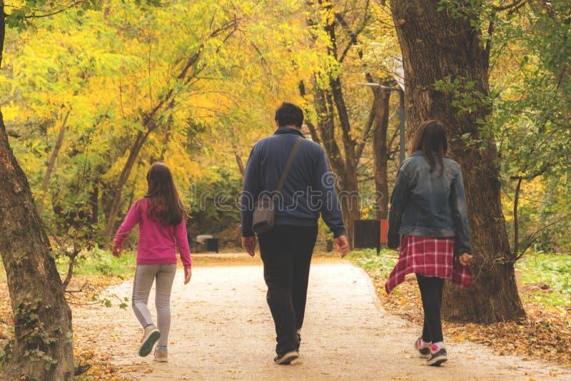 Promenade d'automne en stationnement photographie stock