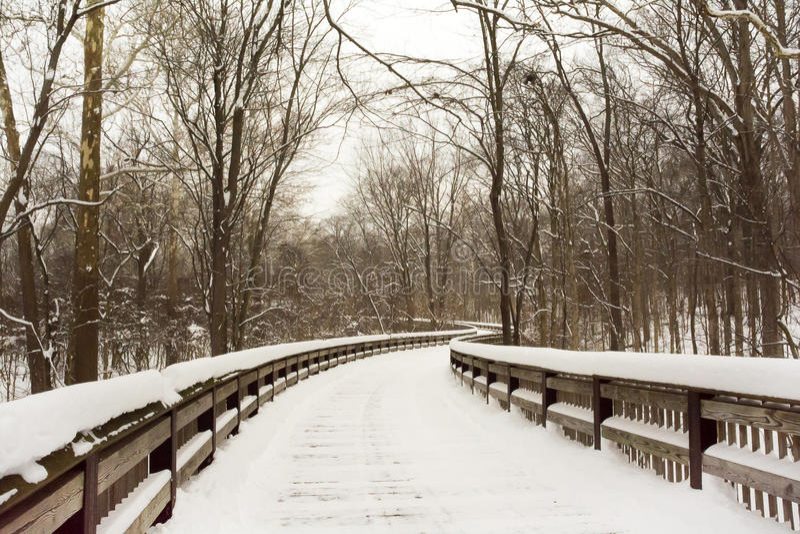 Promenade d'hiver de Milou image libre de droits