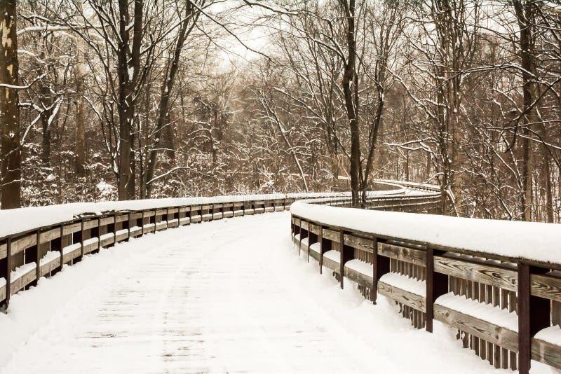 Promenade d'hiver de Milou image stock