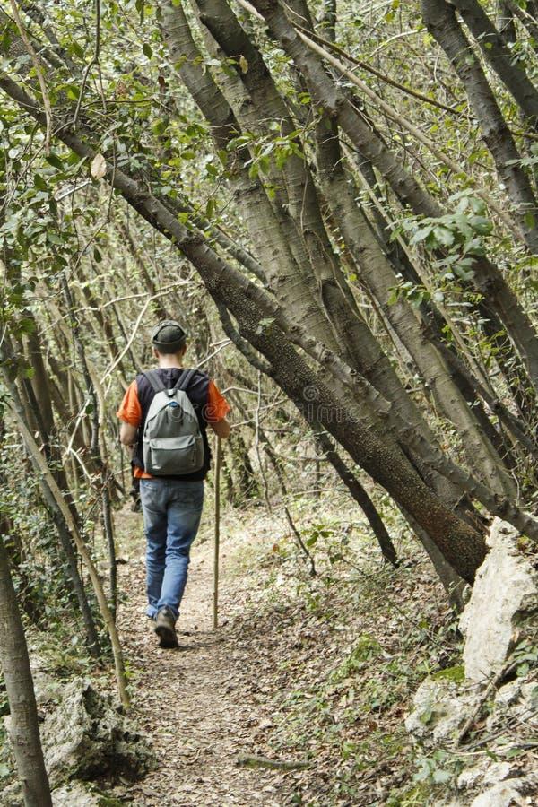 Promenade d'homme en nature et nature photographie stock