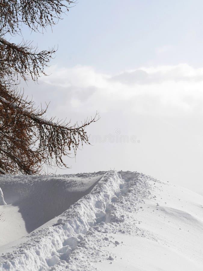 Promenade dans la neige images libres de droits