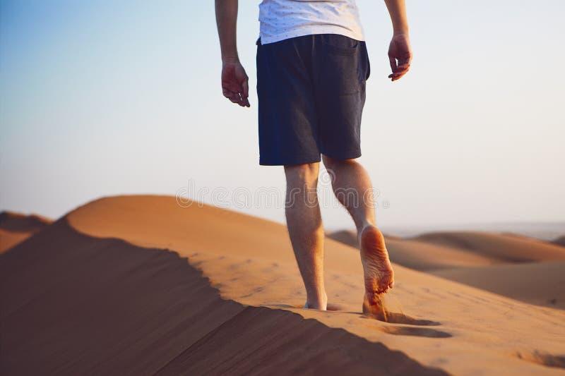 Promenade dans le désert photographie stock libre de droits