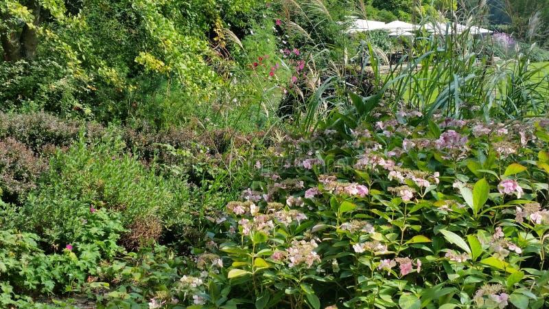 Promenade dans les jardins image stock