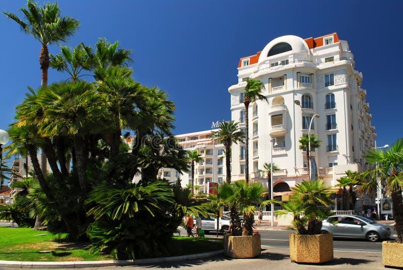 'promenade' de Croisette en Cannes fotografía de archivo