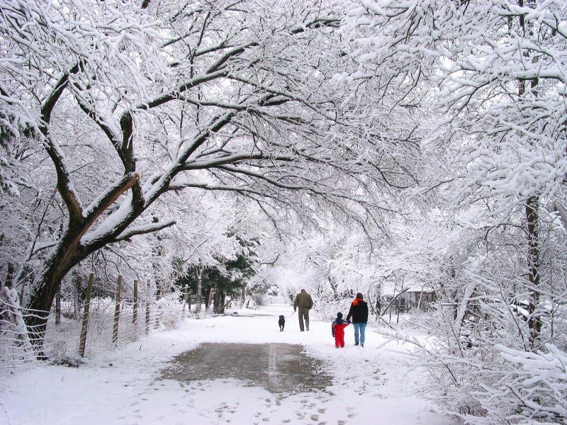 Promenade de famille dans la neige image libre de droits