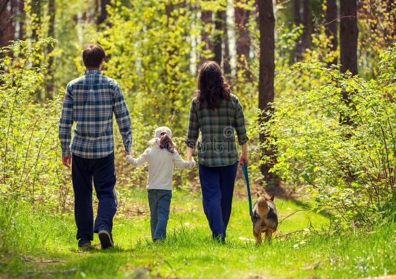 Promenade de famille dans les bois photos stock