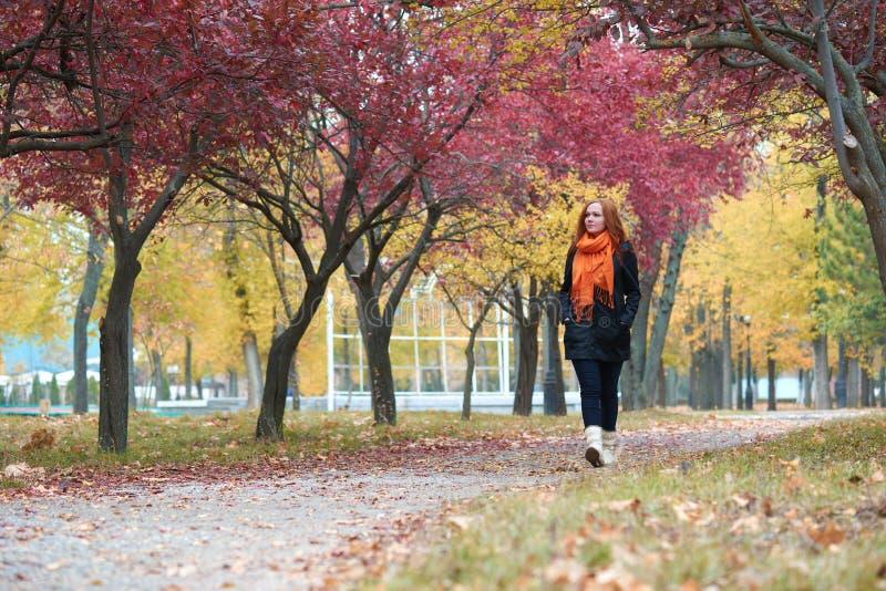 Promenade de jeune femme sur le sentier piéton en parc d'automne, feuilles de jaune et arbres images stock