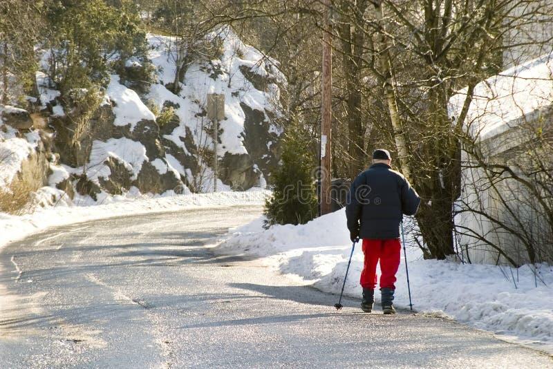 Promenade de l'hiver images libres de droits