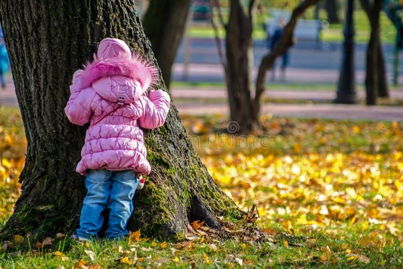 'promenade' de la familia en parque del otoño fotografía de archivo