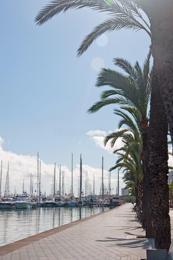 'promenade' de la palma y amarrado navegando los yates foto de archivo