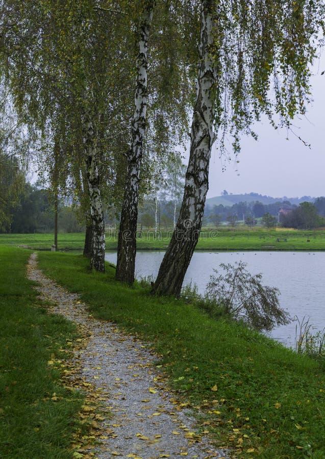 Promenade de lac, Daruvar, Croatie image stock