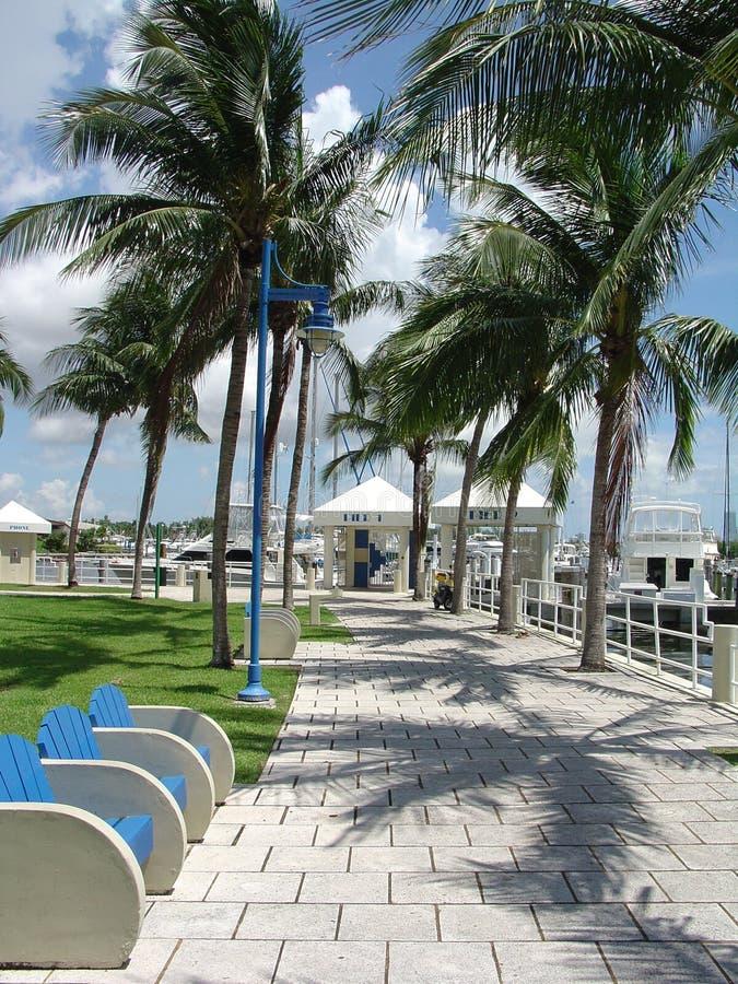 Promenade de marina de Miami images libres de droits