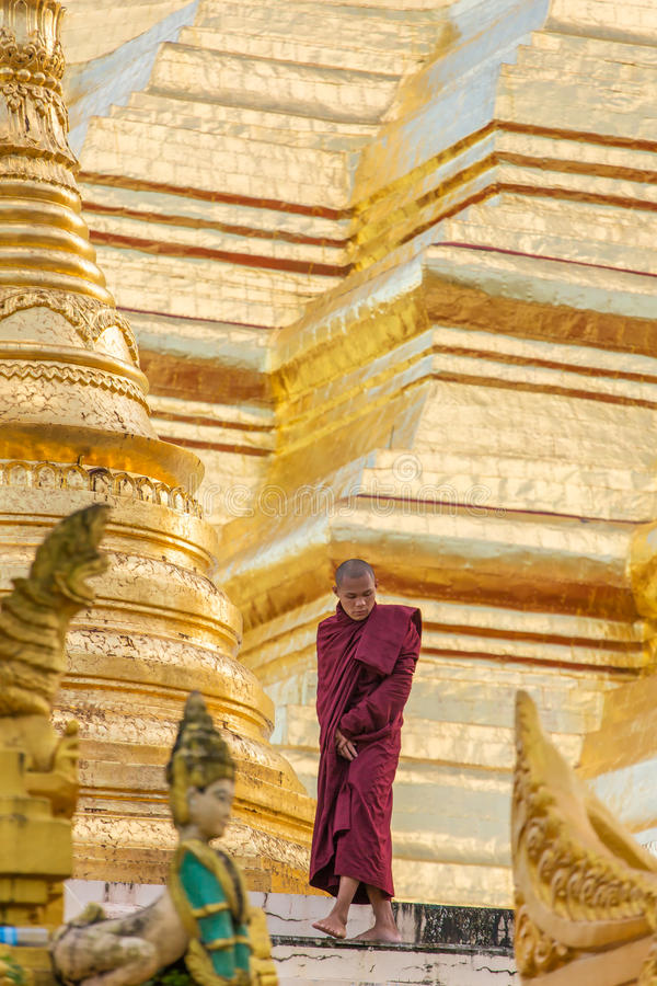 Promenade de moine bouddhiste autour de pagoda de Shwedagon à Yangon, Myanmar photos stock