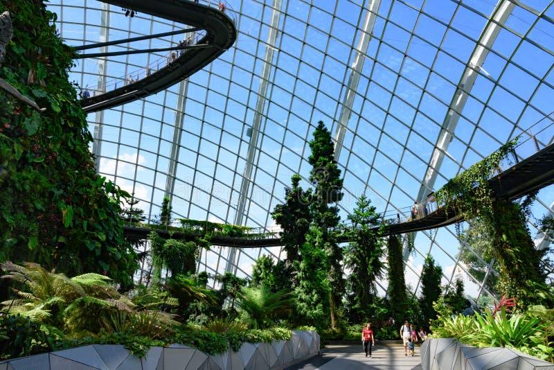 Promenade de nuage et promenade de cime d'arbre en nuage Forest Dome, jardins par la baie, Singapour, Asie photo libre de droits