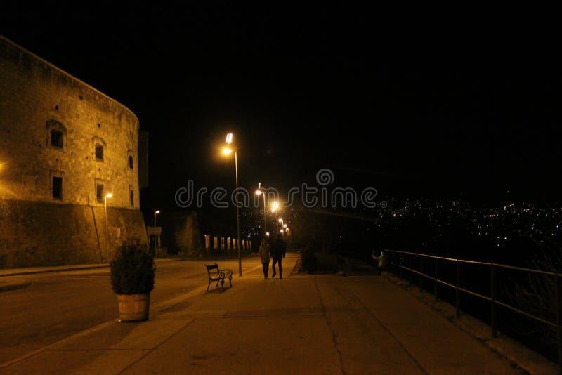 Promenade de nuit en parc foncé images libres de droits