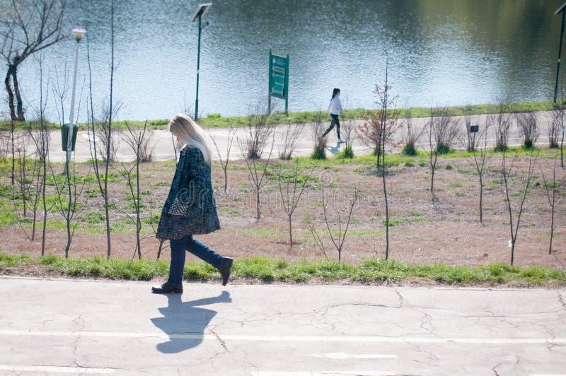 Promenade de parc image libre de droits