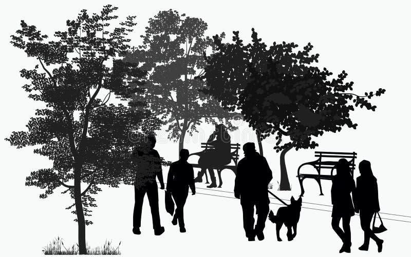 Promenade de personnes en parc illustration de vecteur