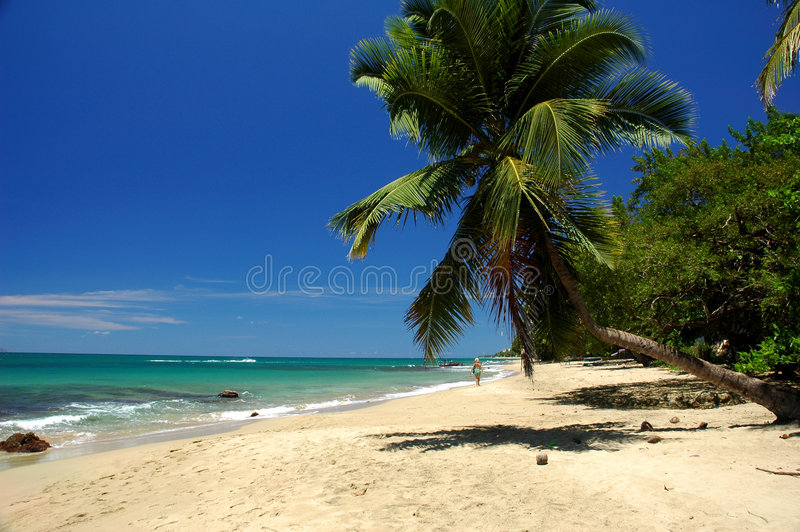 Promenade de plage images stock