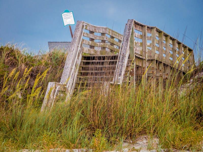 Promenade de plage avec l'avoine de mer photographie stock libre de droits