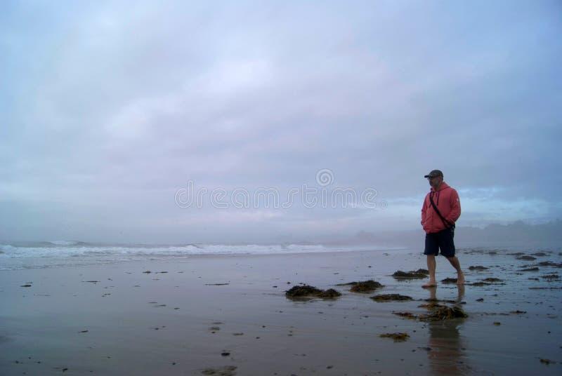 Promenade de plage de début de la matinée photographie stock