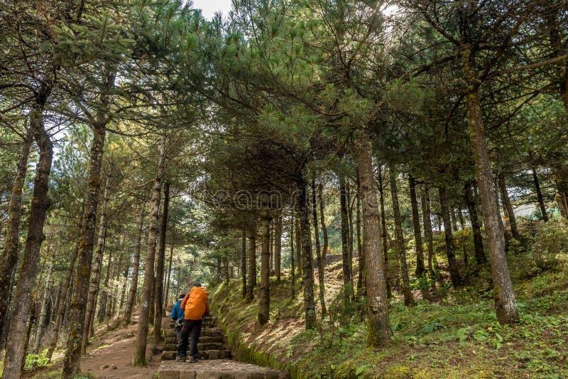 Promenade de Trekker sur le chemin au Mt camp de base d'everest dans la région de Khumbu, Népal photos stock