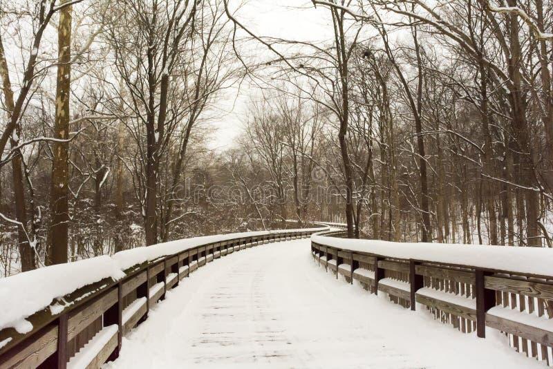Promenade des verschneiten Winters lizenzfreies stockbild