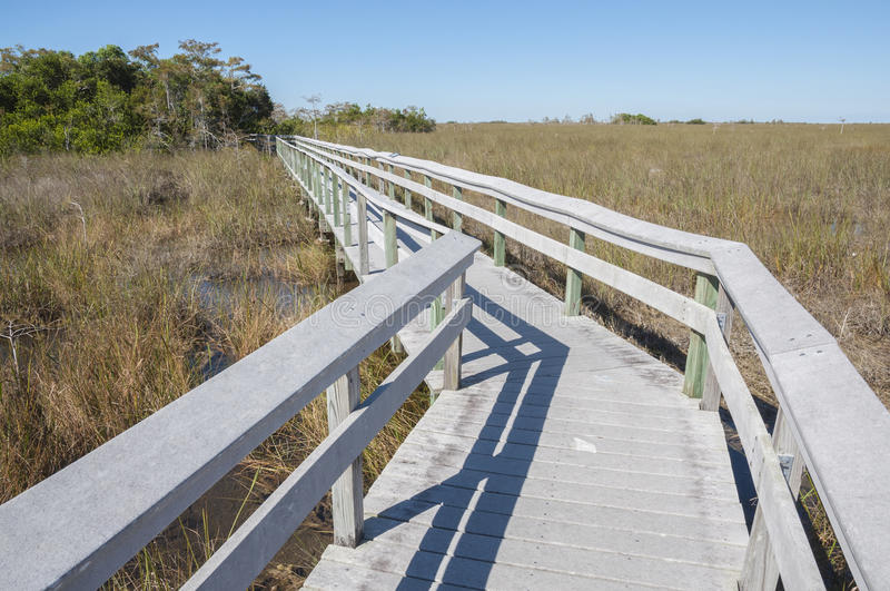 Promenade durch die Sumpfgebiete stockfotos