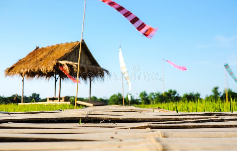 Promenade en bambou aller à la cabane dans les rizières photo stock