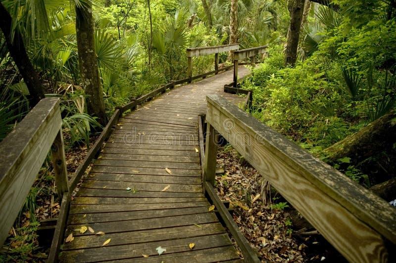 Promenade en bois. image libre de droits