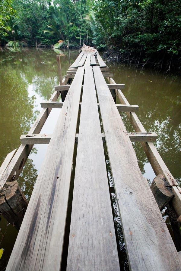 Promenade en bois dans un marais de palétuvier dans le tropique images stock