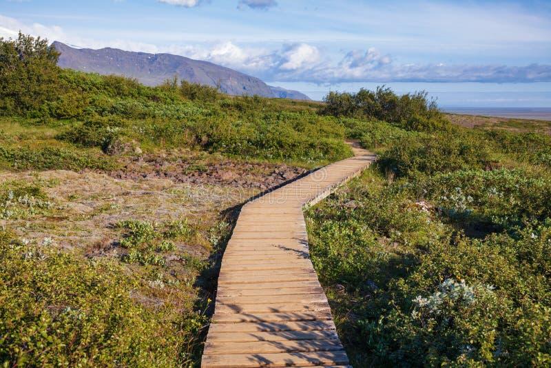 Promenade en bois par le parc national Islande oriental Scandinavie de Skaftafell Vatnajokull de verdure photos stock