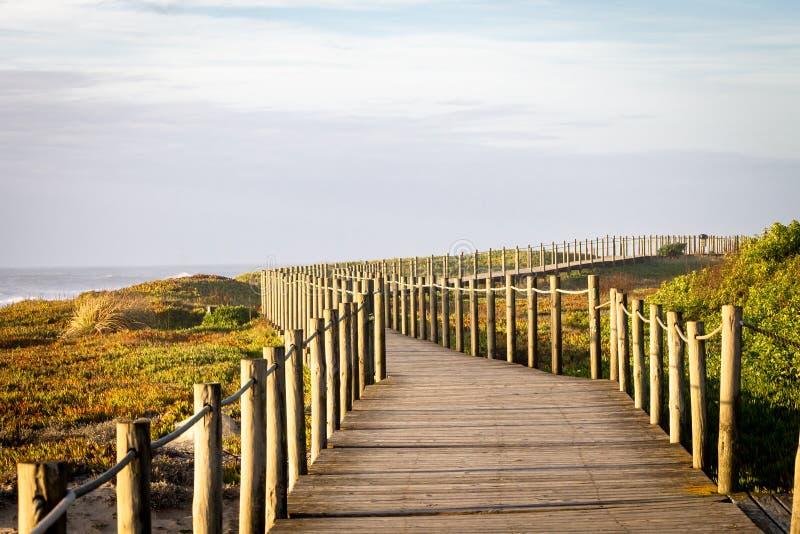 Promenade en bois vide près de la mer photos libres de droits