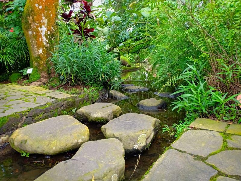 Promenade en pierre dans le jardin images stock