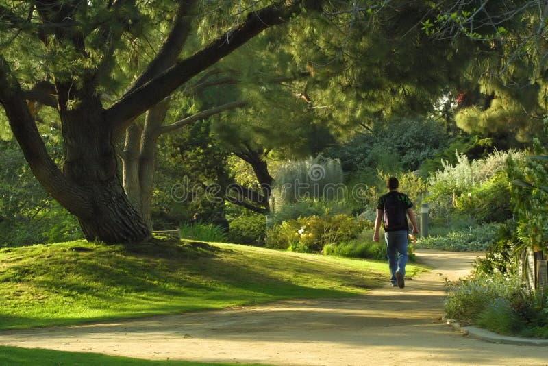 Promenade en stationnement image libre de droits