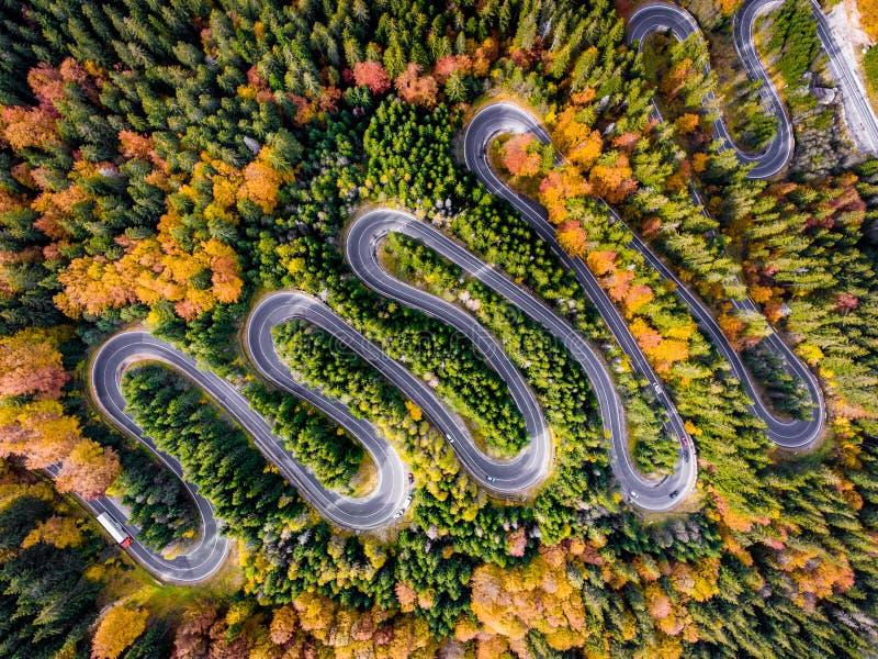 Promenade en voiture dans la forêt en automne image libre de droits