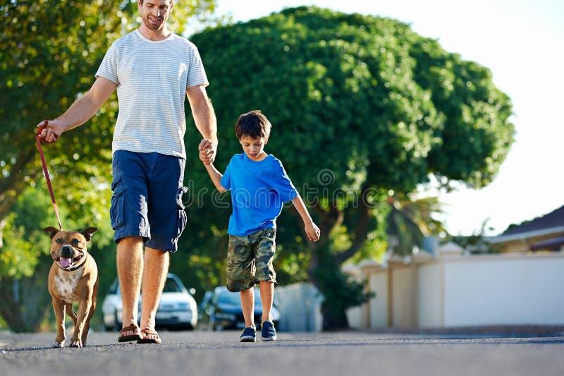 Download Promenade Heureuse De Chien Image stock - Image du famille, animal: 45368973