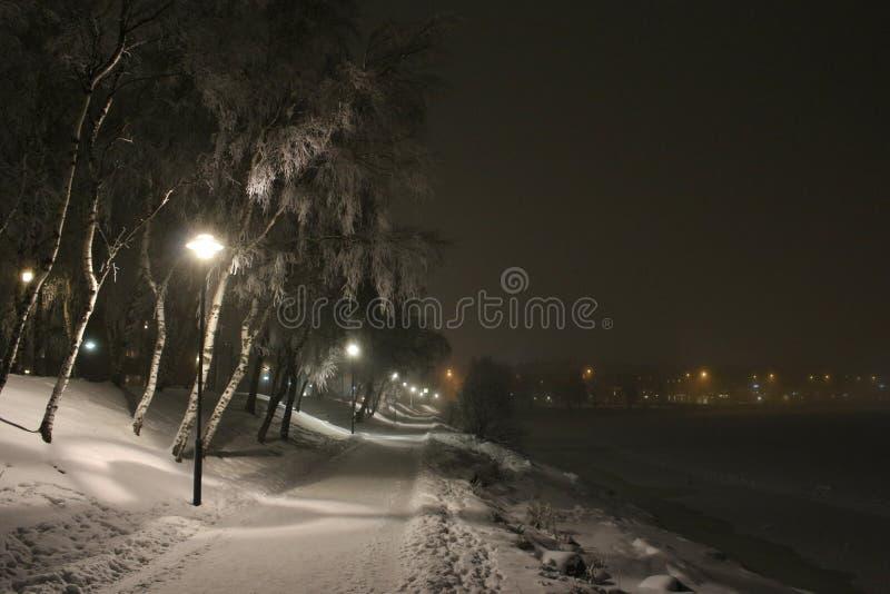 Promenade hivernale loin photo libre de droits