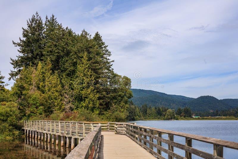 Promenade op het meer in de ochtend naar grote groene boom met bewolkte hemel stock afbeeldingen