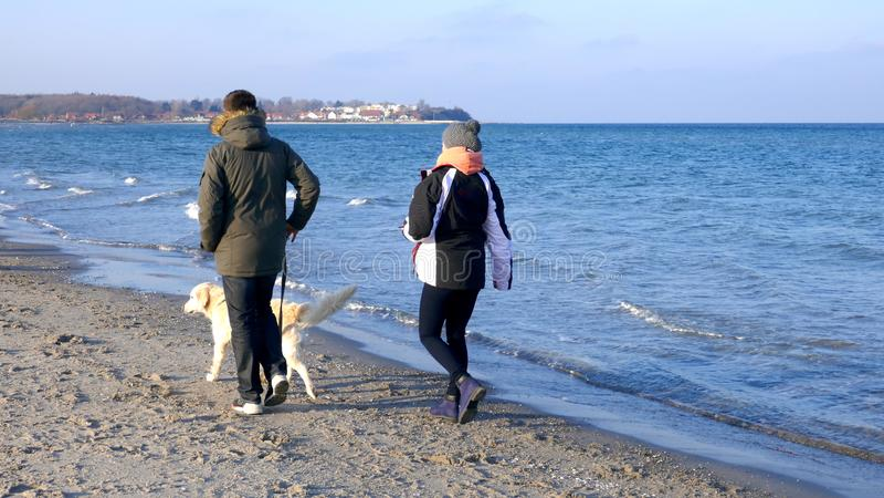 Promenade par la mer Jeunes ajouter à un chien un jour ensoleillé d'hiver image libre de droits